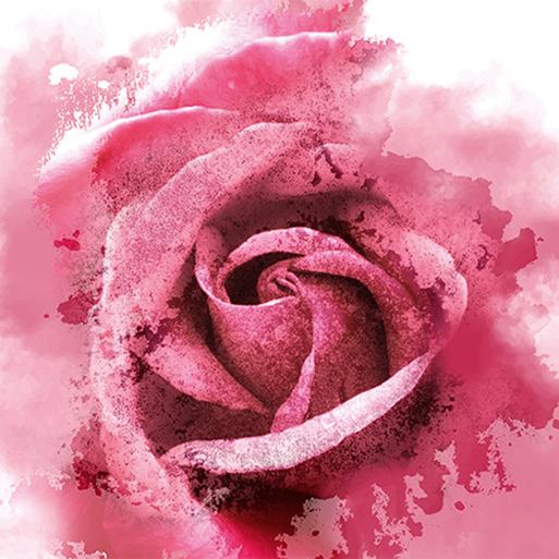 Роза Гран Крю